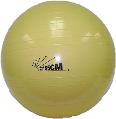 "Heavy-Duty Exercise Fitness Balance Ball, 55 cm (22"") Yellow"