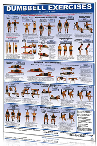 "Dumbbell Exercises 24"" x 36"" Poster"