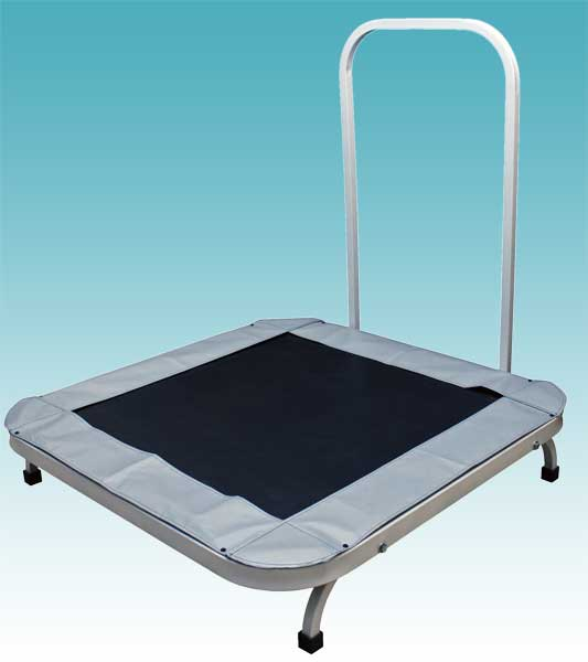 Heavy-Duty Rebounder with Assist Handle